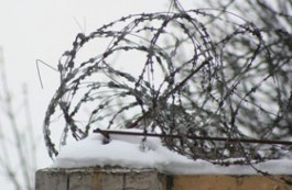 Who Are the Political Prisoners inEurope?